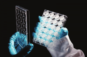 Alvetex 3D cell culture systems