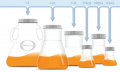 Flasks for protein production