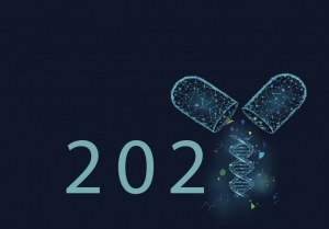 Calendar game 2021 - Discover the answers