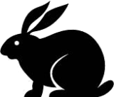 Rabbit Monoclonal Anti-Human PD-1 (PDCD1) [Clone EP239] - Concentrate